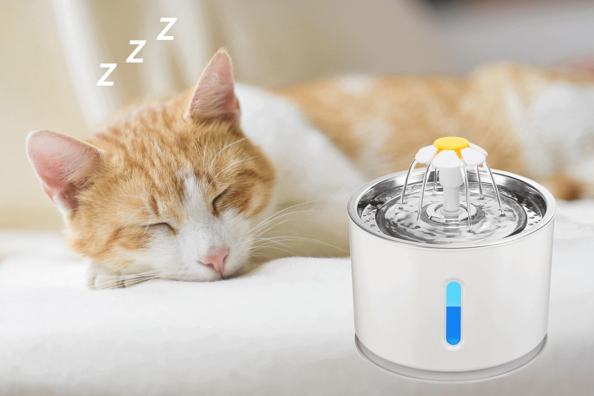 drinkfontein kat - stil