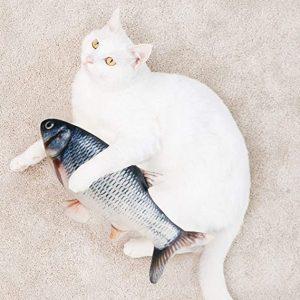 kat en willie de vis